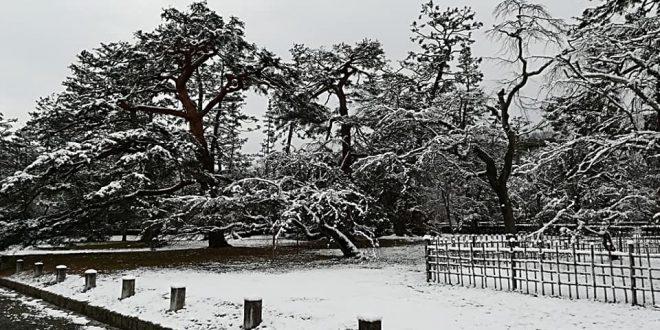 حديث الكاميرا  للفنان Khaldoon Hs ..حيث تسجل عدسته #بياض_ الثلج من اليابان ..من خلال مجموعة صور للطبيعة في فصل الشتاء..雪の京都 صباحكم أبيض..
